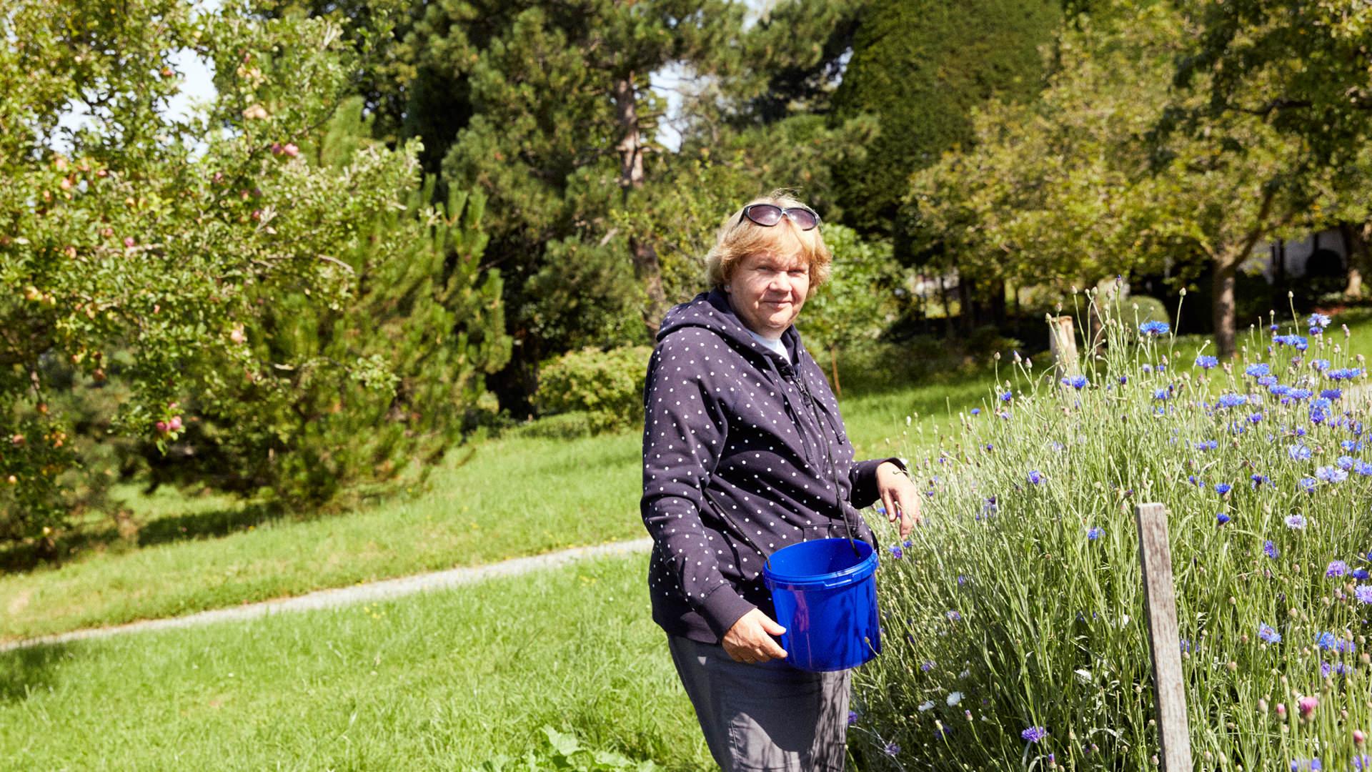 Frau sammelt blaue Blüten in einem Eimer.