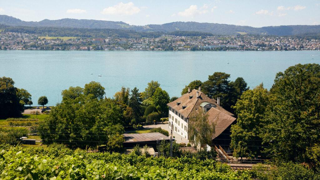 Blick vom Rebberg über das Gründerhaus der Martin Stiftung und den Biohof auf den Zürichsee.