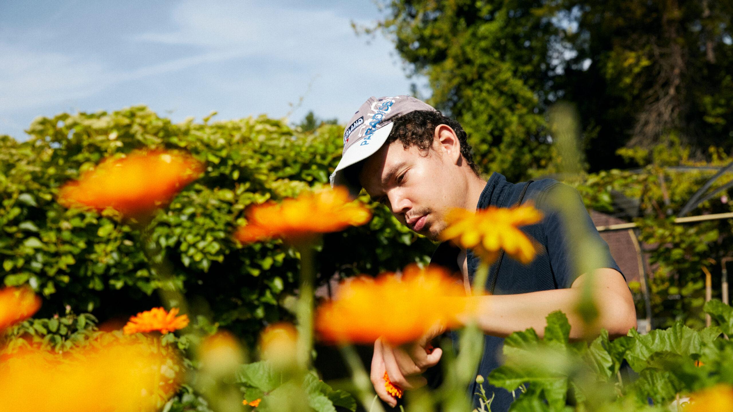 Junger Mann mit Behinderung im Blumen- und Kräutergarten auf dem Biohof der Martin Stiftung. Er pflückt Blüten der Ringelblume.