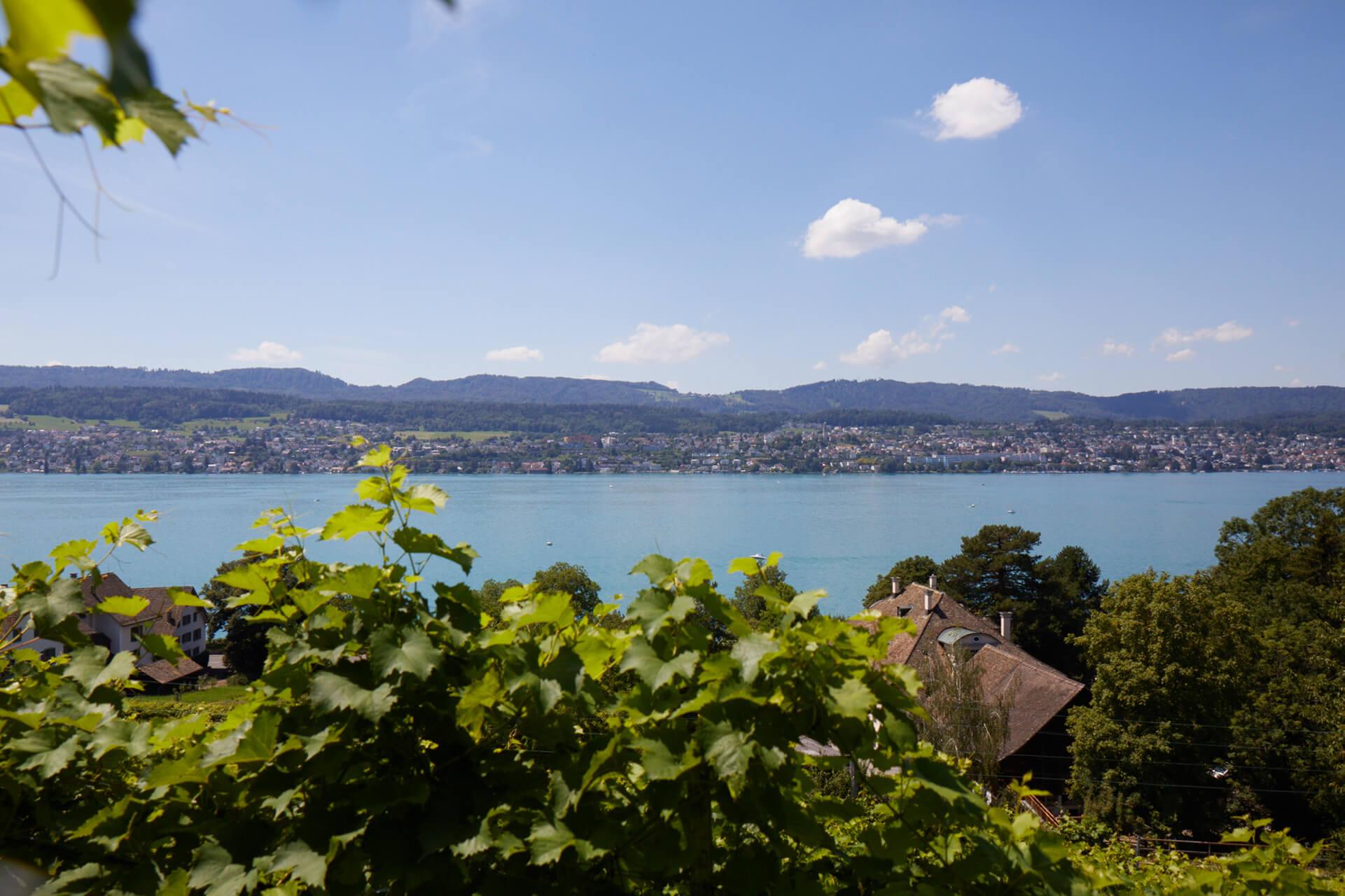 Hat Tradition bei den Weinen am Zürichsee: Die Martin Stiftung